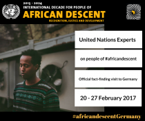 UN working group on People of African Descent advertisement